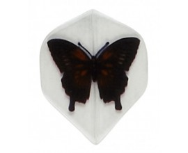 """Butterfly"" Poly Flights"